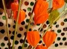 queensberryflowers-blogspot-com_